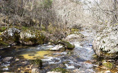 Duruelo de la Sierra - Vilviestre de los Nabos